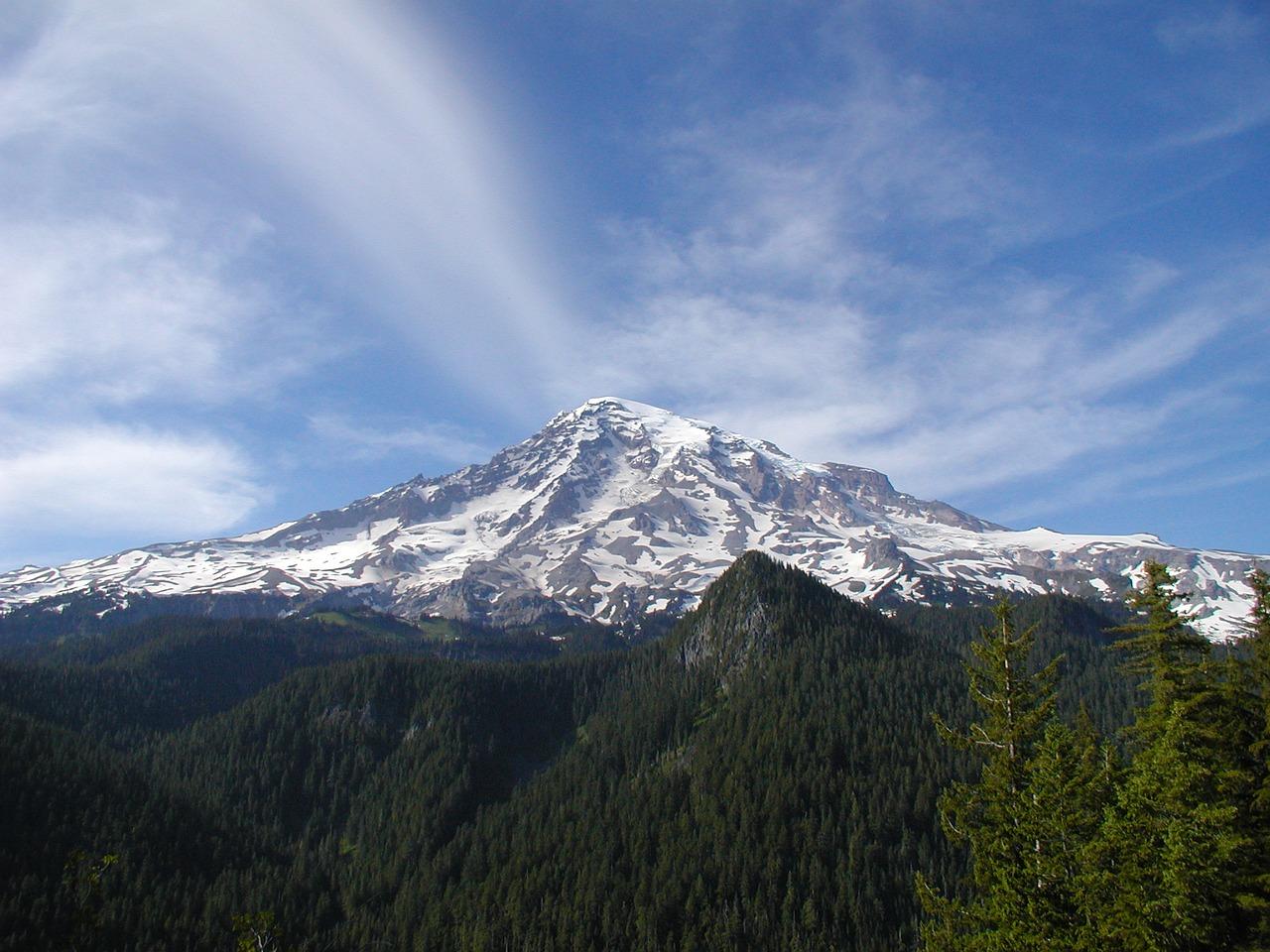 Alps homework help